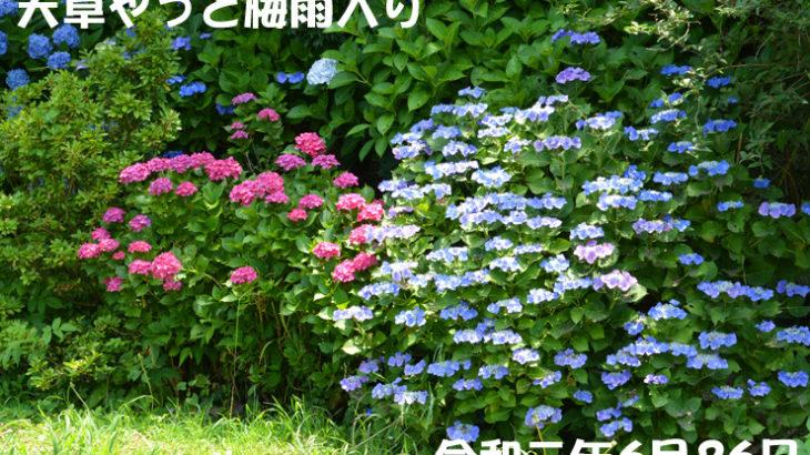 天草梅雨入り 6月26日