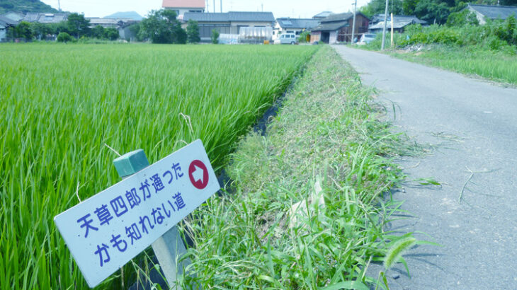 【動画リンク集1】上天草市大矢野町編